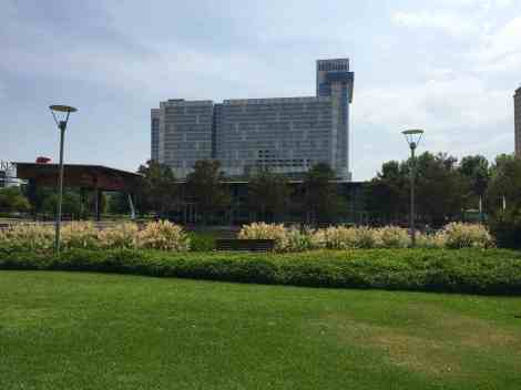 Hilton Americas-Houston from Discovery Green